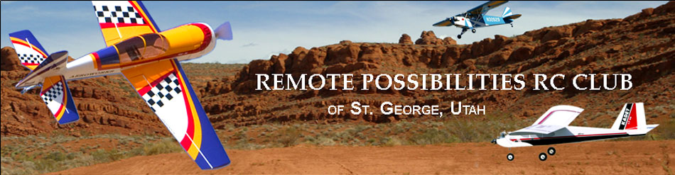 Remote Possiblities Website